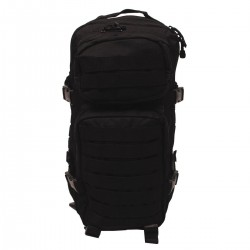 US Assault Pack I