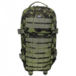 US Assault Pack Molle Typ I - Cz M95